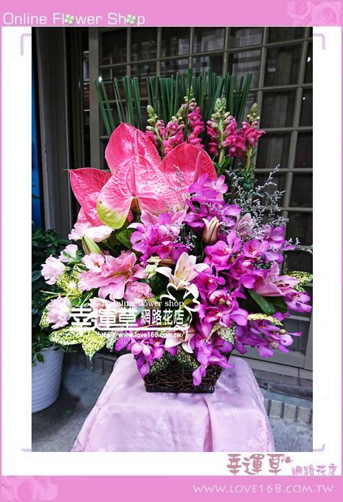 C1223優質盆花