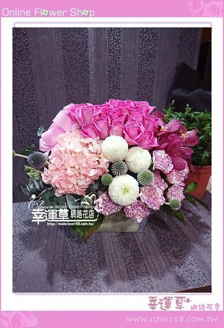 優質盆花C0403
