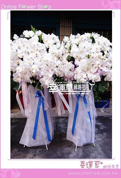 蘭花柱型花藍一對B0219