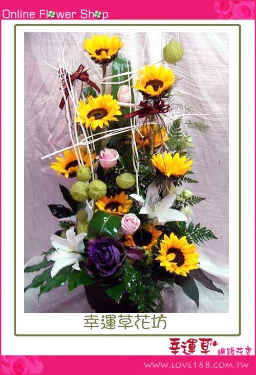 C03 優質盆花
