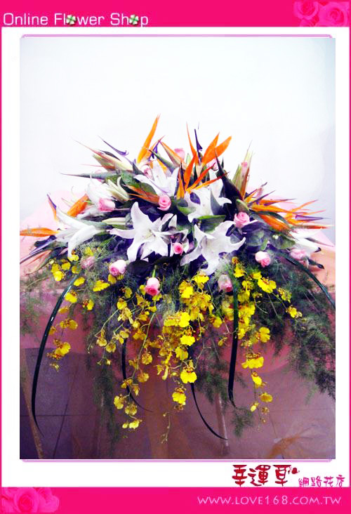 C05優質盆花