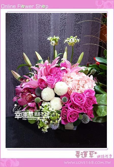 優質盆花C0407