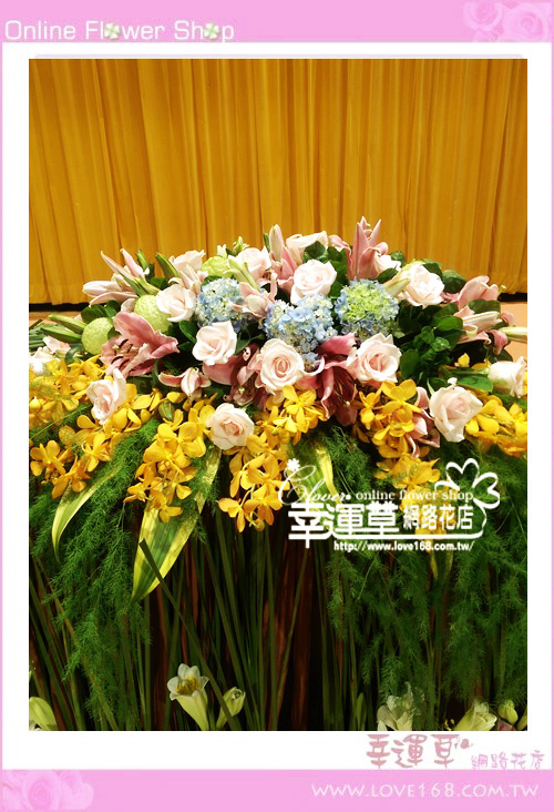 C56優質盆花