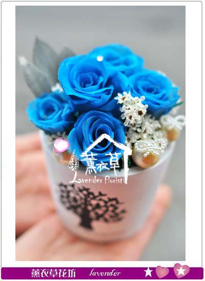 不凋玫瑰花設計106011609