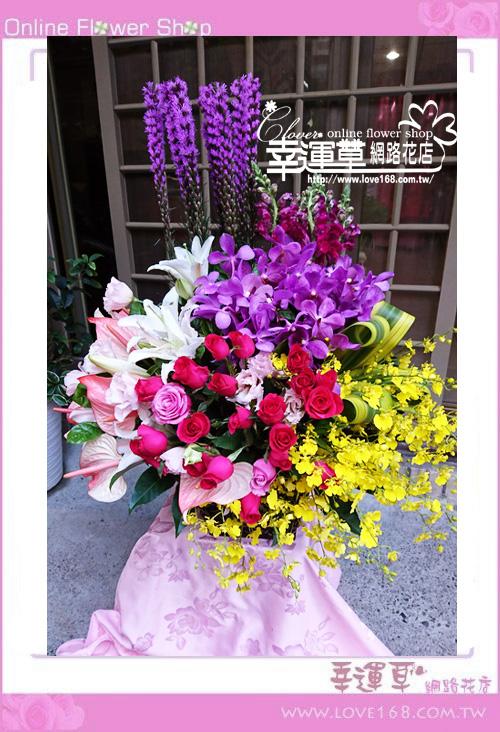 C89優質盆花