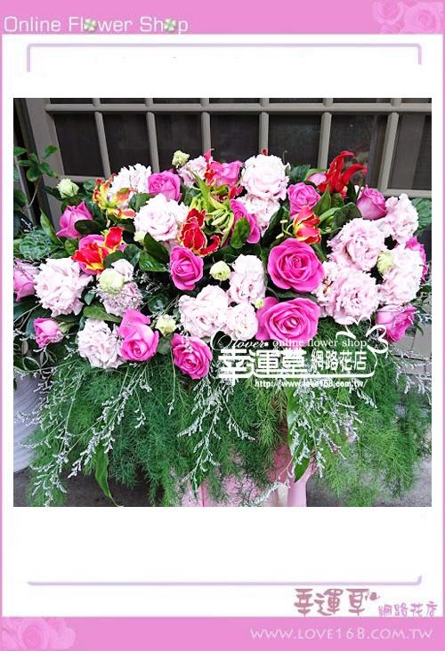 優質盆花C0220
