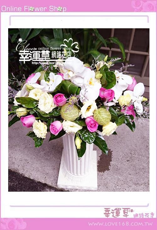 優質盆花C0218