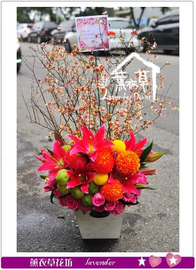 盆花設計106012116