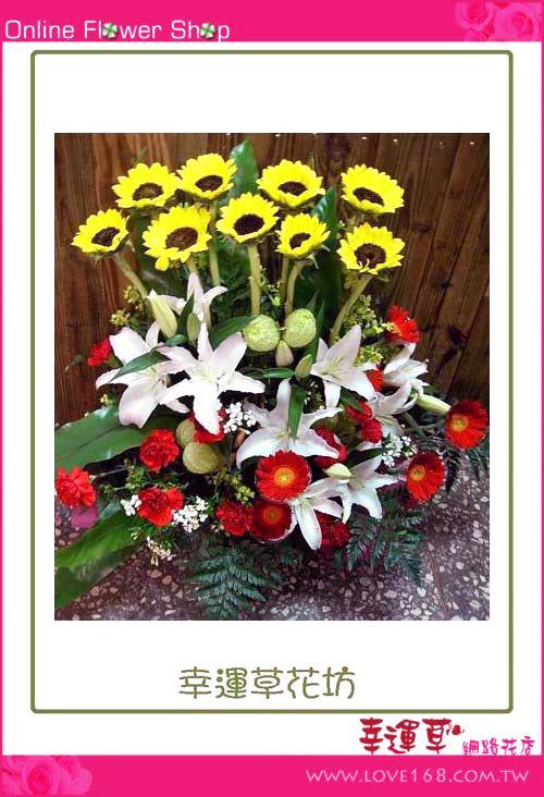 C10 優質盆花