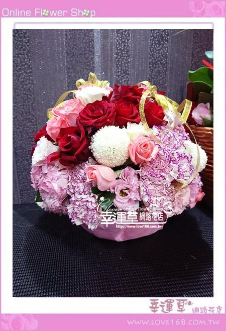 優質盆花C0406