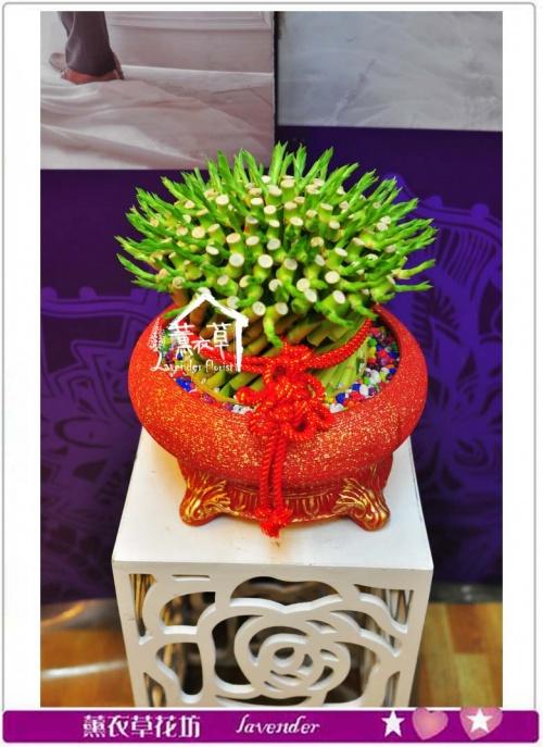 圓滿開運竹-紅盆B55