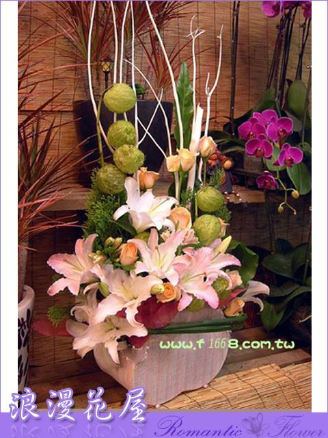 F13精緻盆花