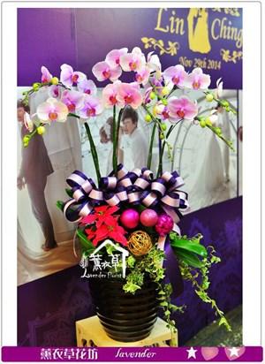 高雅蘭花禮盆a091907