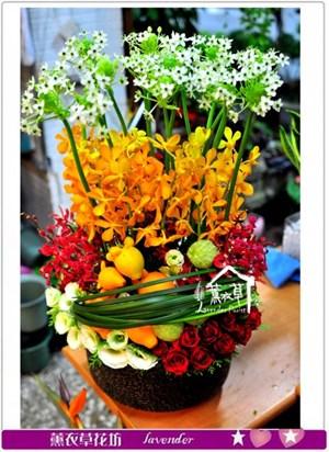 盆花設計c100333