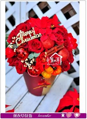 聖誕盆花設計c120819