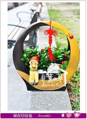 羅漢松桌上盆栽 106032803