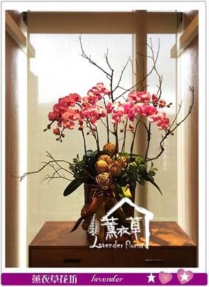蝴蝶蘭 設計 106120710