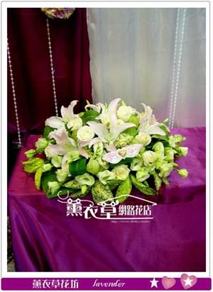 盆花設計y32163