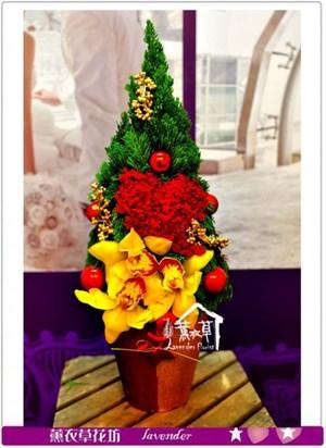 盆花設計~聖誕款c122626