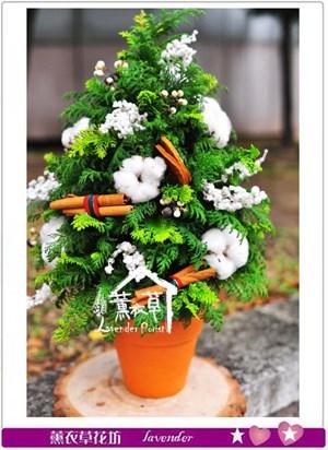 聖誕設計B112201