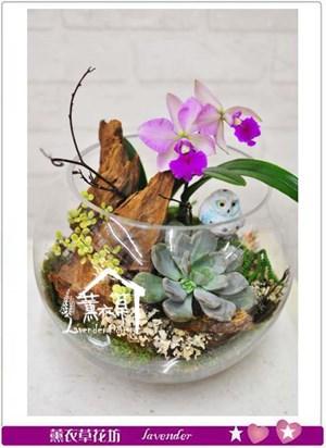 蘭花設計B122311