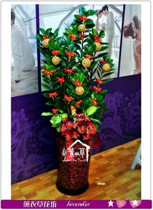 金錢樹盆栽c122623
