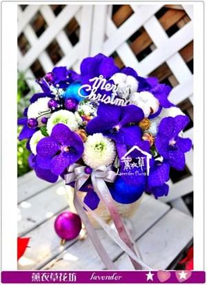 盆花設計c120817