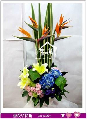 天堂鳥盆花aa1225