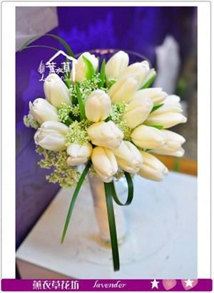 鬱金香a011902