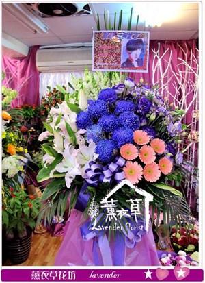 進口紫色牡丹菊花來設計一個y34005
