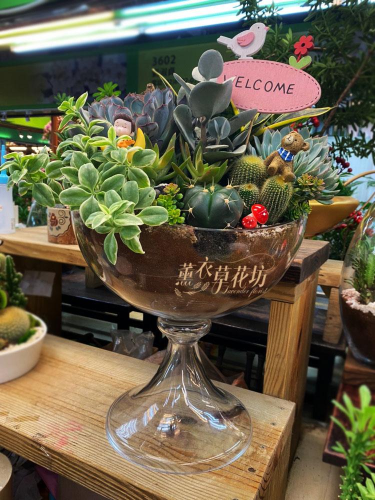 多肉植物&玻璃設計 109110606