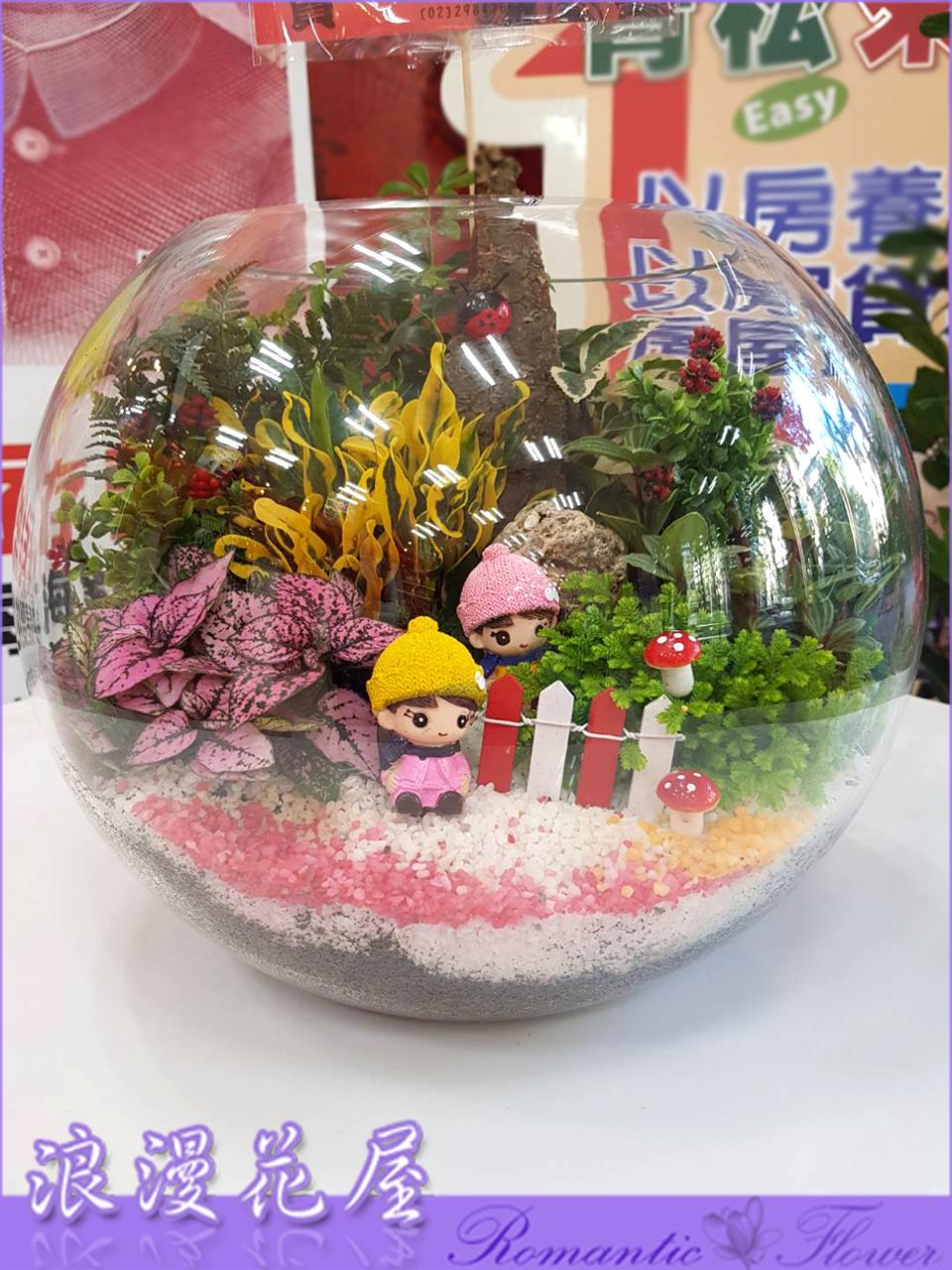 玻璃球盆栽 3-171