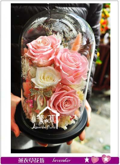 粉色不凋花設計 107022215