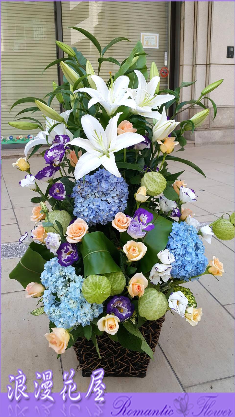 盆花F47