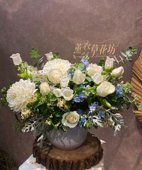 盆花設計 110042921