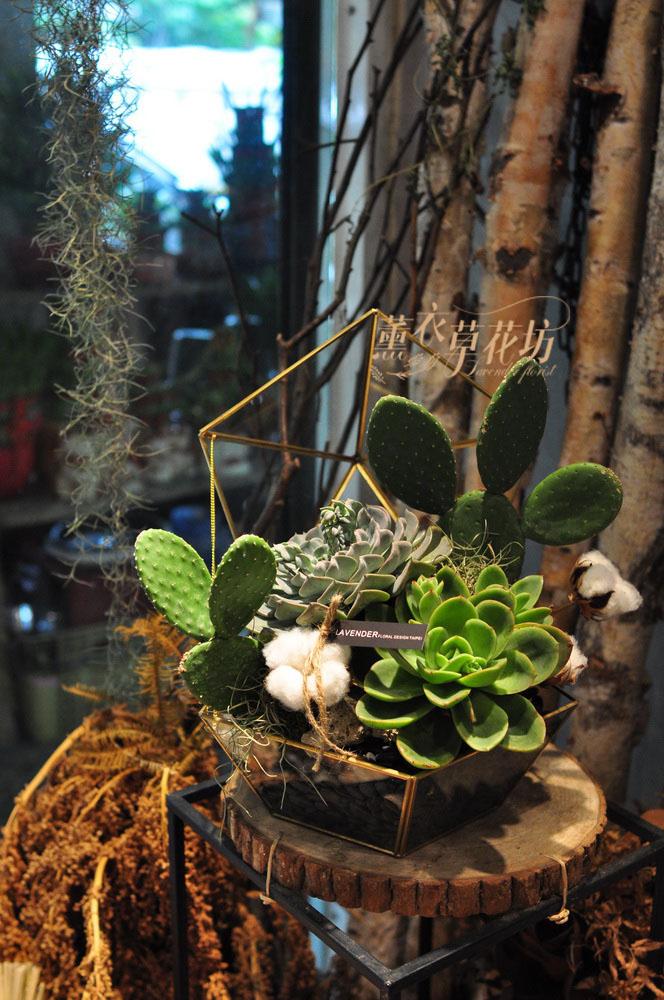 多肉植物&玻璃花器設計 109042705