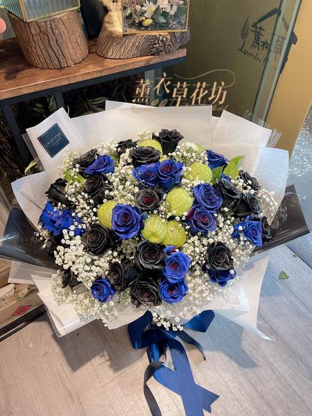 進口/黑玫瑰+藍玫瑰花束33朵110050319