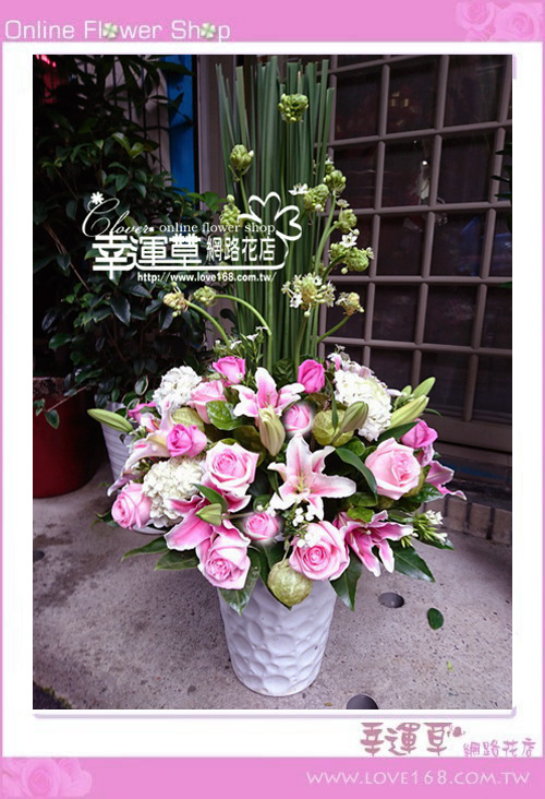 優質盆花C0103