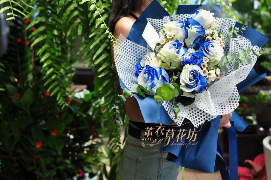 缺貨-荷蘭進口~2019新品種~藍色漸層玫瑰花束108072032