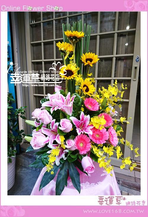 優質盆花C0104