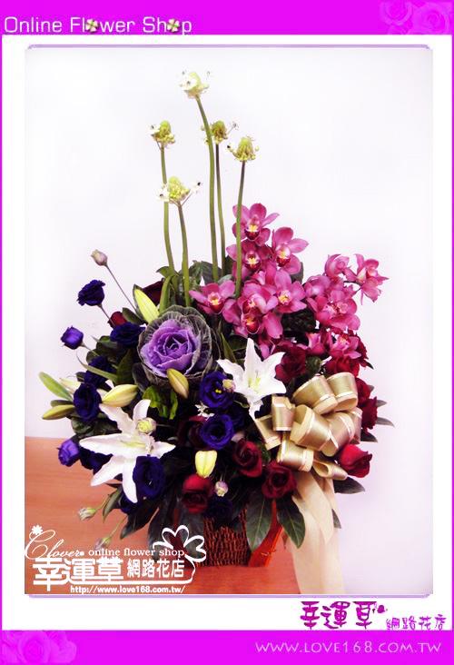 C52優質盆花
