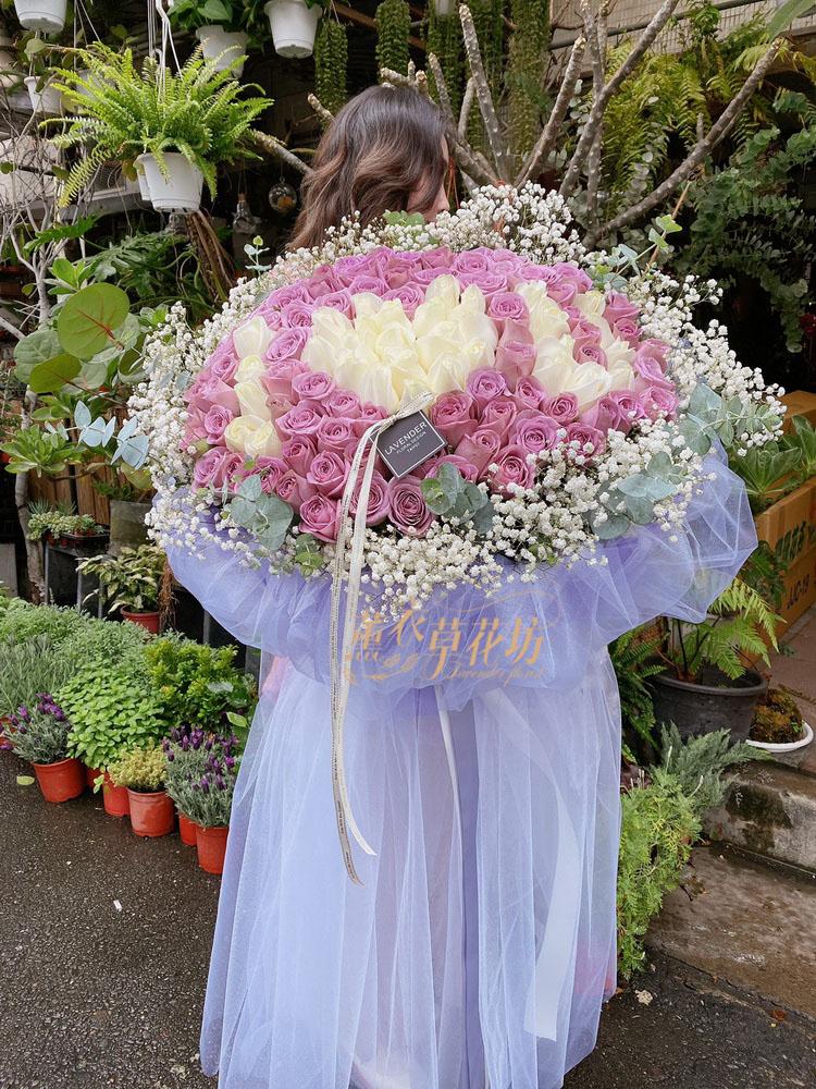 荷蘭進口玫瑰花束101朵109031212