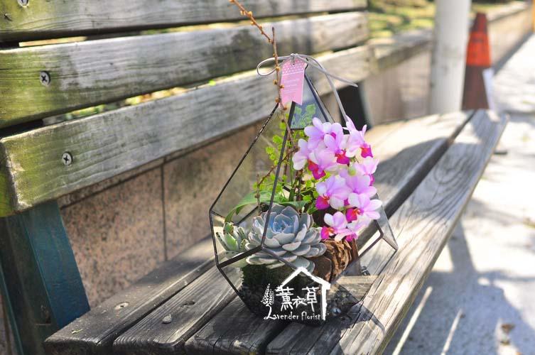 缺貨-玻璃鋼&蝴蝶蘭設計107031106