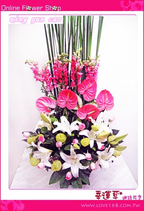 C17優質盆花