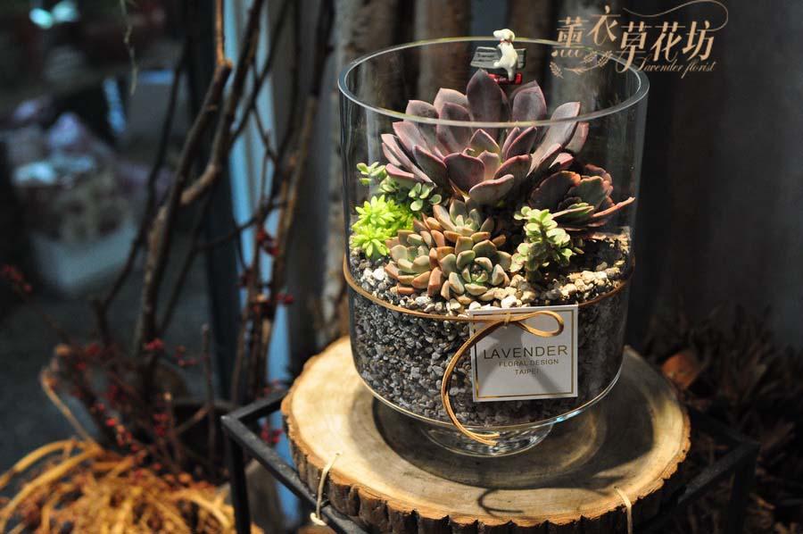 缺貨-多肉植物&玻璃缸設計a110517