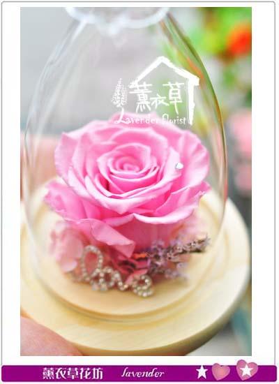 不凋花~玫瑰106011502