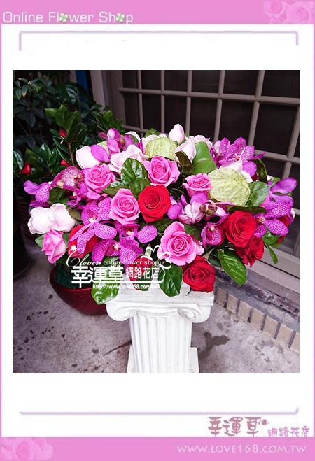 優質盆花C0410