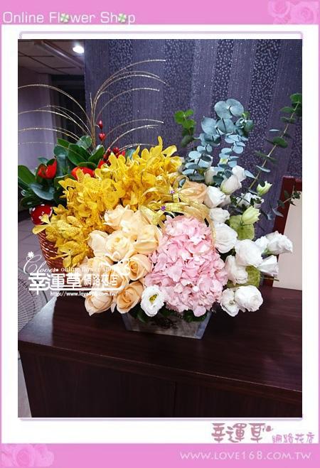 優質盆花C0405