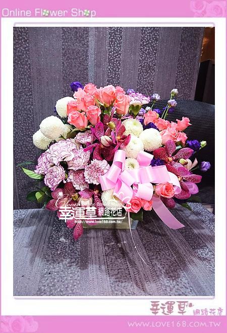 優質盆花C0408