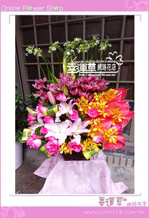 C88優質盆花